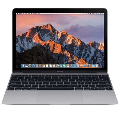 Ноутбук Apple MacBook 12-inch Mid 2017 Space Gray Z0TX0001Y